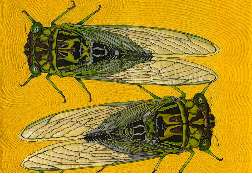 Quilt with two flies on it by Susan Brubaker Knapp